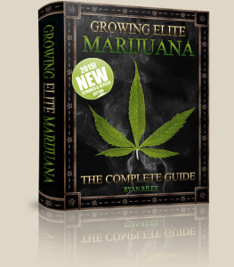 Marijuana Grow Guide E Book