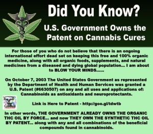 Cannabis and the U.S Government