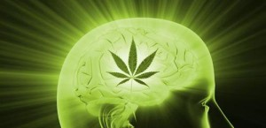 cannabis-and-creativity-article-thcfinder