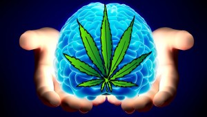 Weed for Brain cells